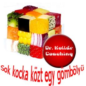 DR KOLLÁR ISKOLA EGYETEMI és NEMZETKÖZI minőségű coach képzés 99958b022b7